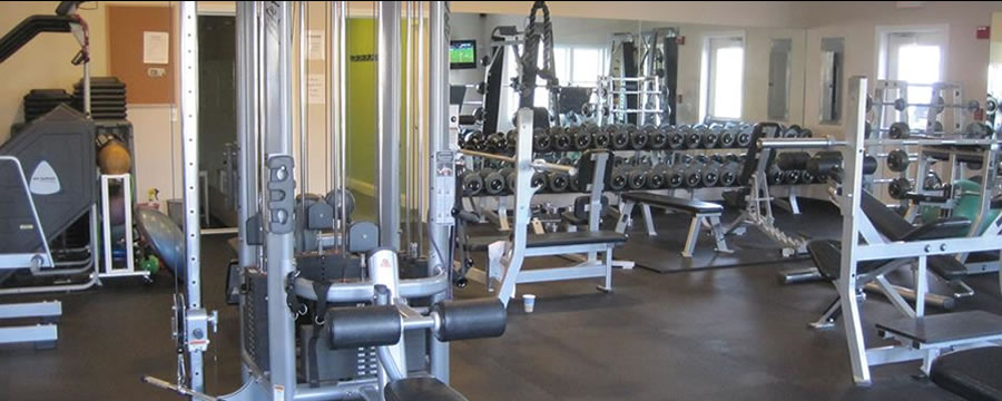 Core Strength & Conditioning Life Fitness | Hammerstrength